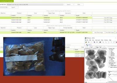 Chicken Nugget Inspection Data